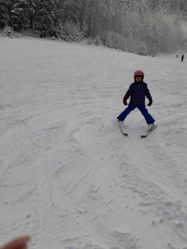 One Ski School -  (103)
