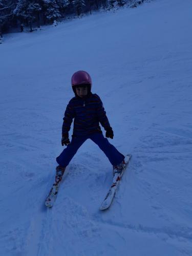 One Ski School -  (116)