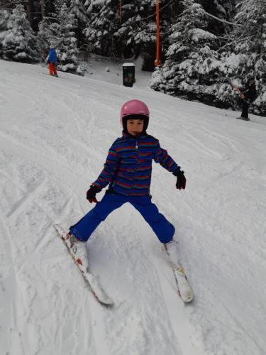 One Ski School -  (125)