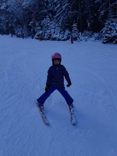 One Ski School -  (128)