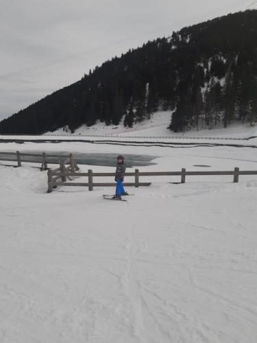 One Ski School -  (142)