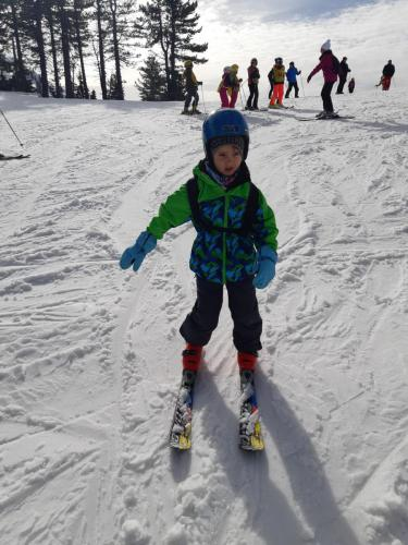 One Ski School -  (66)