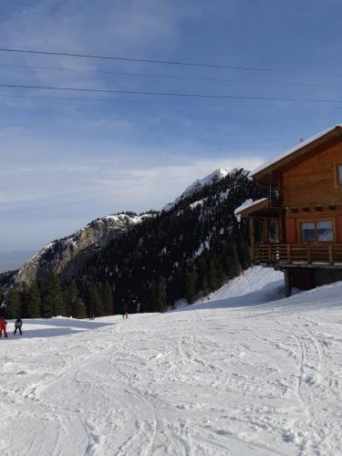 One Ski School -  (69)