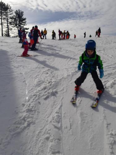 One Ski School -  (71)