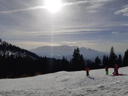 One Ski School -  (72)