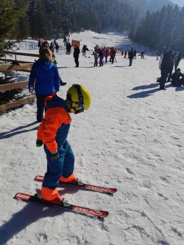 One Ski School -  (78)