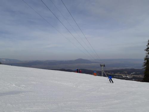One Ski School -  (82)