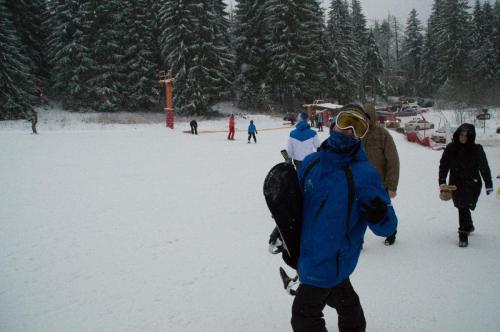 One Ski School -  (83)