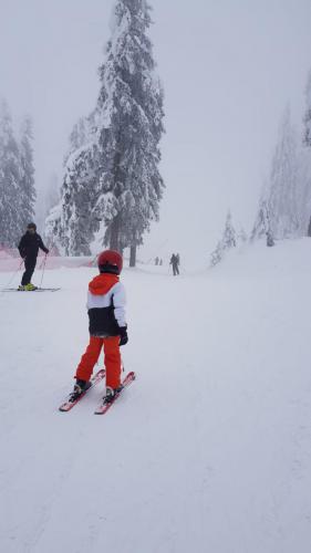 One Ski School -  (86)